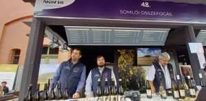 Somlói borászok – közösen